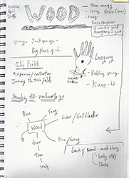Chi Gung Exercise Notes 0341.JPG