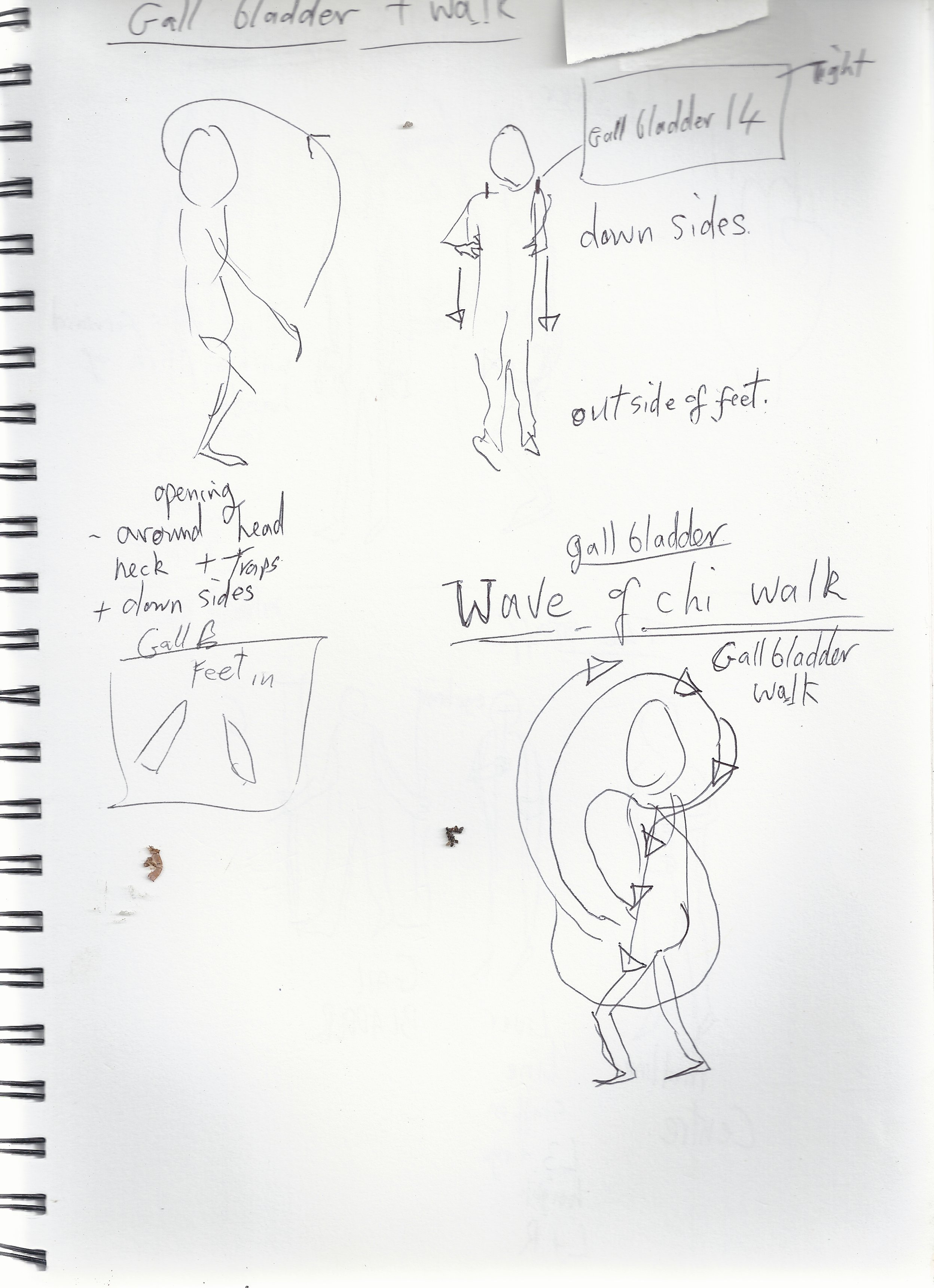 Chi Gung Exercise Notes 0349.JPG